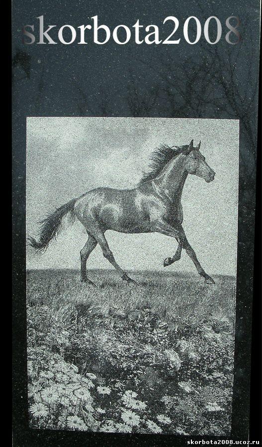 пейзаж конь поле ромашки гранитный памятник